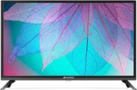 [Pre Pay] Sansui Pro View 80cm (32 inch) HD Ready LED TV 2019 Edition  with WCG(32VNSHDS)