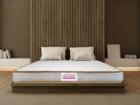 Librapaedics Premium 4 inch Queen PU Foam Mattress
