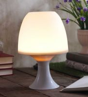 White Biodegradable Plastic Table Lamp by Sehaz Artworks